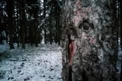 Winterimpressionen 04.01.2021