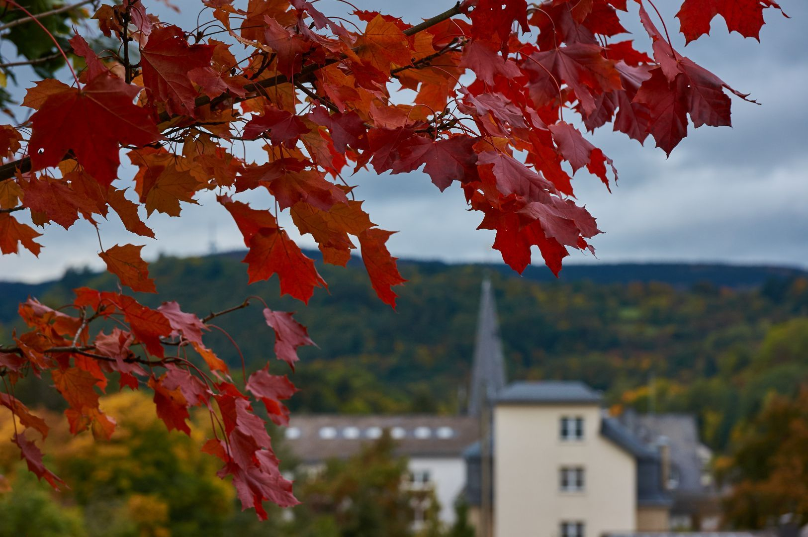 Weibern im Herbst